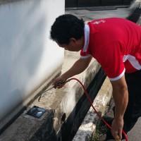 Mosquito control service in Ambur